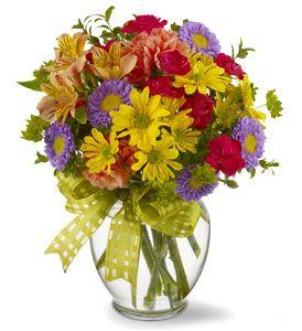 Make A Wish - Sweet Lily's