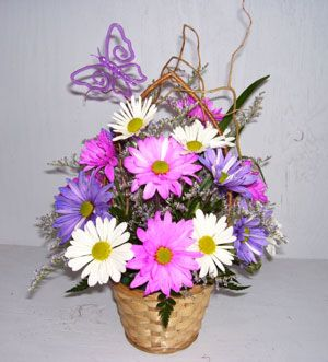 Mixed Daisy Basket - Sweet Lily's