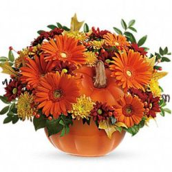 Country Pumpkin - Sweet Lily's Flowers
