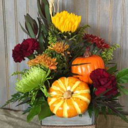 Golden Harvest - Sweet Lily's Flowers