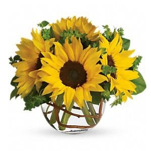 Sunny Sunflowers - Sweet Lily's Flowers